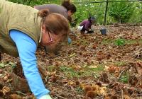 Fademur reivindica el papel de las mujeres rurales en la economía de los pueblos
