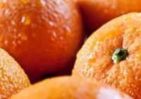 El valor de las exportaciones de naranjas ha crecido un 8% en la última campaña y supera los 122 millones de euros