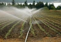 El Ministerio de Agricultura presenta SIAR, la app que permite gestionar el riego desde el móvil