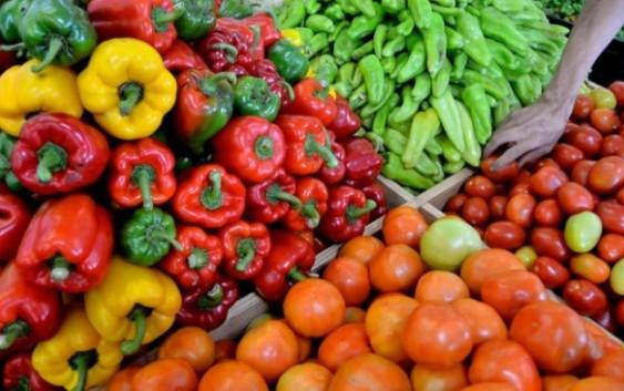 ES Andalucía exige que se cumplan las normas europeas y se indiquen el origen de los productos marroquíes y del Sáhara