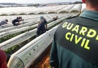 El Defensor del Pueblo pide que Junta y Guardia Civil actúen en conjunto para evitar los robos en el campo