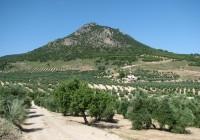 ASAJA-Jaén advierte que la ley de senderos andaluces pondrá en grave riesgo el patrimonio de cientos de agricultores