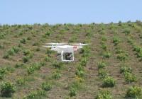 Agricultura abre la convocatoria de ayudas para la creación y funcionamiento de Grupos Operativos de Innovación