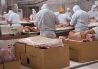 Autorizada la exportación de carne de porcino española a México