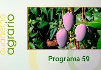 Cuaderno Agrario PGM 59