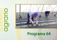 Cuaderno Agrario PGM 64