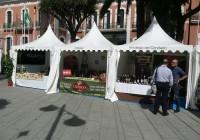 El 'Aceite de Huelva' protagoniza la agenda de eventos del mes de octubre en la provincia onubense
