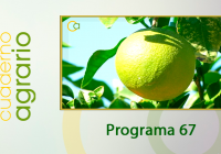 Cuaderno Agrario PGM 67