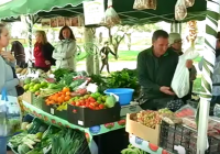 VÍDEO: El mercado ecológico de Gines