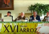 VÍDEO: El 'Día del Arroz' en La Puebla del Río