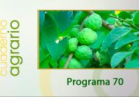 Cuaderno Agrario PGM 70