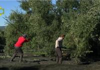 Los jóvenes agricultores, con serios problemas para hacer frente a los gastos de la recogida de la aceituna por el impago de sus ayudas