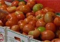 Las exportaciones agroalimentarias a China entre enero y octubre aumentan un 50% y superan los 211 millones de euros