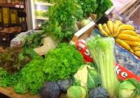 La Junta refuerza el plan de fomento de productos ecológicos en sus centros educativos, asistenciales y hospitalarios