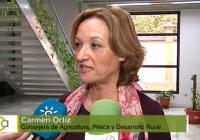 Carmen Ortiz advierte del perjuicio que inflige el Gobierno a Andalucía al derivarle la sanción europea por las ayudas en zonas de pastos