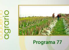 Cuaderno Agrario Programa 77