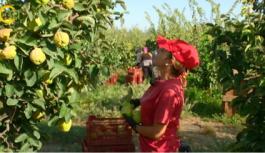 Agricultura reitera su apuesta por los jóvenes y garantiza que habrá un aumento en las ayudas para su incorporación al campo