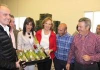Andalucía exportó en 2016 casi el 60% del total nacional de espárragos frescos por más de 34 millones de euros