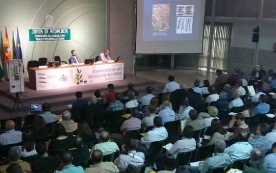 La Consejería de Agricultura inmoviliza 592.000 plantones de frutales en inspecciones de viveros clandestinos