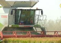 ASAJA-Andalucía insta a la Consejería de Agricultura a pedir que amplíe el plazo de las solicitudes de la PAC hasta el 31 de mayo