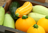 Agricultura destina más de un millón de euros a la promoción  de alimentos amparados por un régimen de calidad