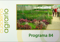 Cuaderno Agrario PGM 84