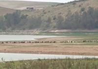 VÍDEO: Sequía en Andalucía