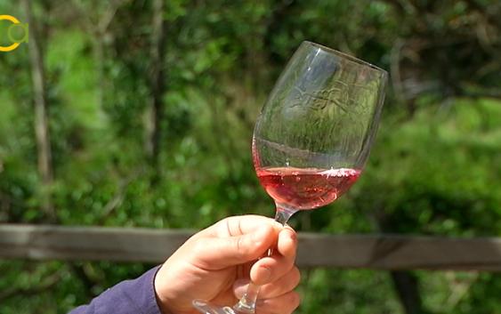 El sector vitivinícola andaluz contará con 3 millones de euros en incentivos para su promoción en terceros