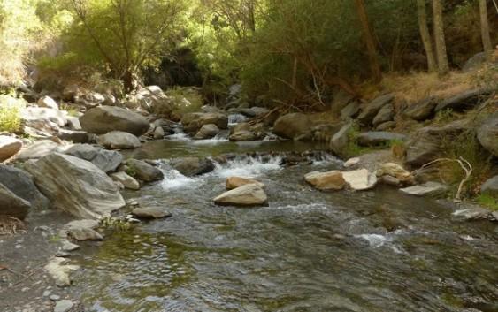 La CHG inicia el proyecto de restauración fluvial en las cuencas altas del Genil y Guadiana Menor
