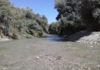 La CHG atiende la propuesta de UPA Jaén  para el riego del río Guadalbullón y los  olivareros comienzan a regar desde hoy