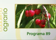 Cuaderno Agrario PGM 89