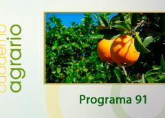 Cuaderno Agrario PGM 91