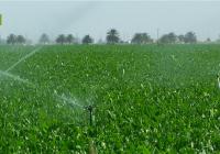UPA Andalucía reclama un cambio en la gestión del uso del agua