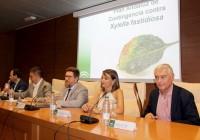 Agricultura activa el teléfono de atención y consulta contra la Xylella y refuerza sus centros de investigación de referencia