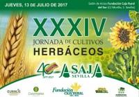 El futuro del trigo y el girasol a debate en Sevilla, primera productora de estos dos cultivos en España