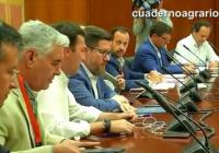 """VÍDEO: Sánchez: """"Vamos a ir de la mano con el sector y la Administración del Estado para luchar contra la Xylella"""""""