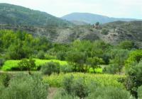 Aprobadas las obras para la reparación de los daños por el temporal en el Camino Natural del Ferrocarril Guadix – Almendricos