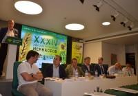 El trigo y el girasol tendrán futuro en Andalucía si el sector marca una estrategia de diferenciación que les separe de sus competidores