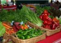 El valor de las frutas y hortalizas de Almería alcanza los 2.400 millones de euros, un 19% más que en la campaña anterior
