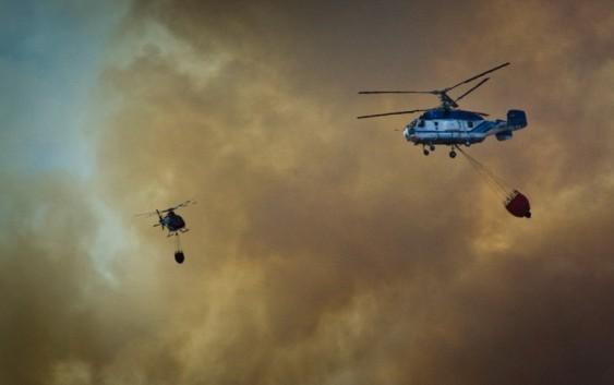 Seis medios aéreos del MAPAMA han participado en la extinción del incendio forestal de Cartaya (Huelva)