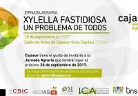 Cajasur organiza la jornada agraria 'Xylella Fastidiosa, un problema de todos' en Córdoba