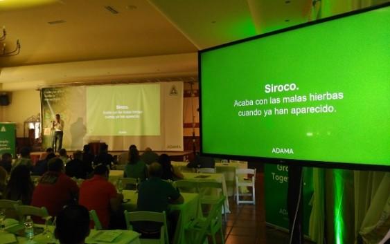 Siroco® y Anibal®: Las nuevas soluciones de Adama para el control de malas hierbas en olivar