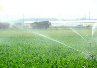 La Junta destina 3,8 millones de euros a estudios que persiguen mejorar la eficiencia de las instalaciones de riego