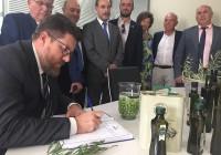"""Rodrigo Sánchez destaca el """"enorme esfuerzo"""" del sector andaluz por mejorar la producción y calidad de los aceites"""