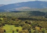 Asaja muestra su preocupación ante la propuesta de declarar Sierra Morena de Córdoba como Parque Natural