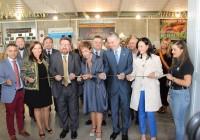 Agricultura convoca una reunión del vino el 6 de noviembre para abordar el futuro del sector en Andalucía