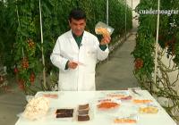 VÍDEO: Investigación sobre el aprovechamiento de destríos en Las Palmerillas