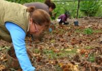Agricultura impulsa medidas para el empoderamiento económico de mujeres y jóvenes en el medio rural