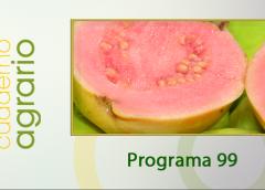 Cuaderno Agrario PGM 99