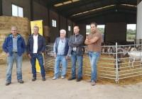 COAG-Andalucía recomendará no firmar contratos de leche de cabra por debajo de los costes de producción
